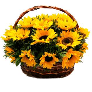 Корзина с цветами «Луч солнца»