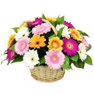 Цветы в корзинке «Микс гербер»